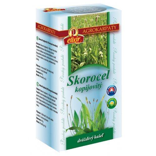 AGROKARPATY SKOROCEL kopijovitý čaj 20x2 g