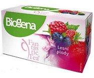 Biogena Fantastic Tea Lesné plody ovocný čaj 20x2,2 g